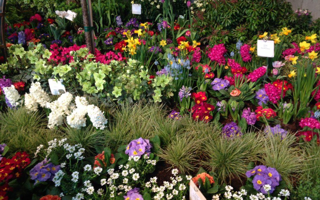 The Northwest Flower and Garden Show