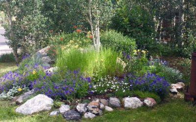 Gardeners Have More Fun: HIRING FULL OR PART TIME LABORER