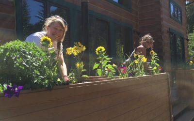 Meet the Gardeners