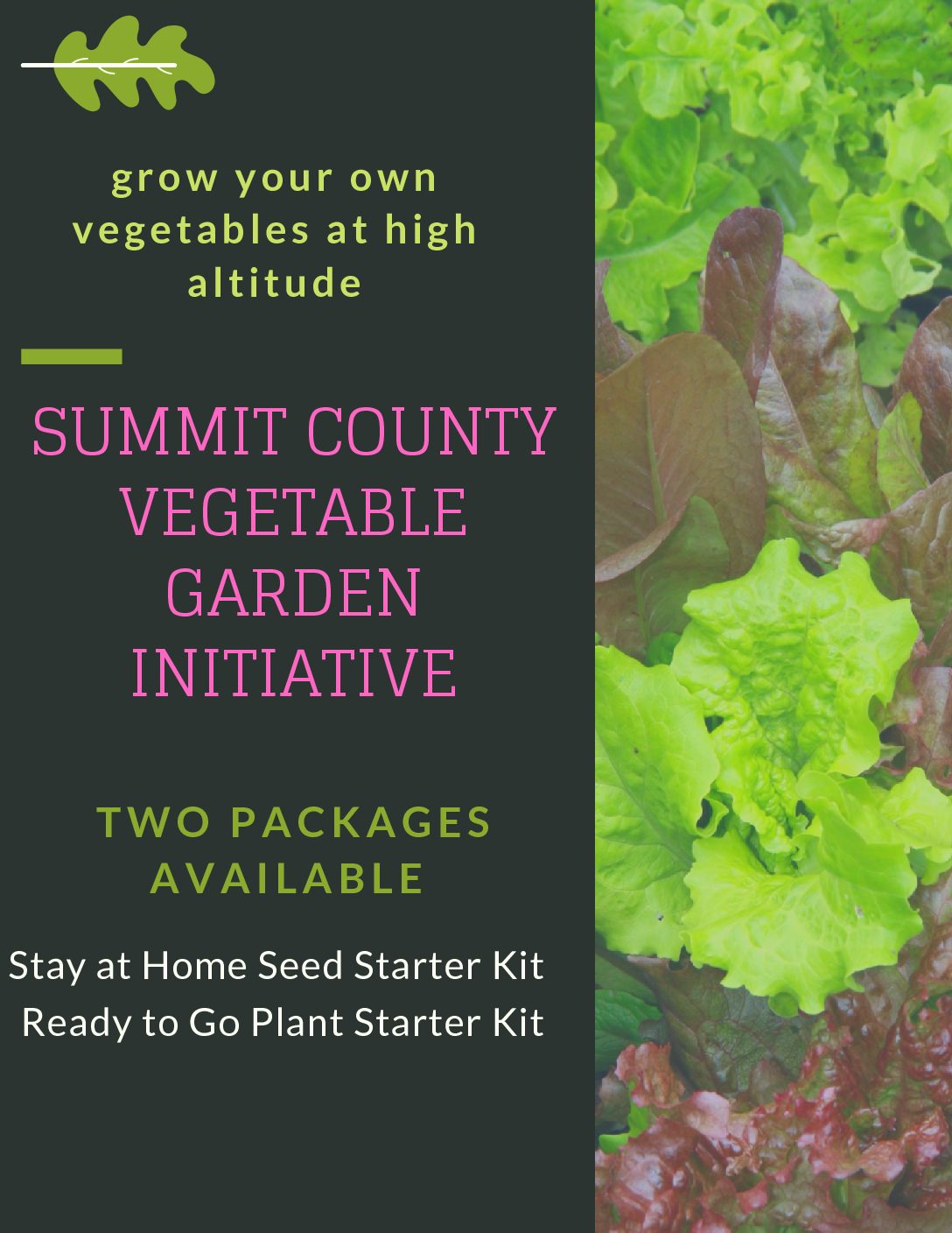 Summit County Vegetable Garden Initiative